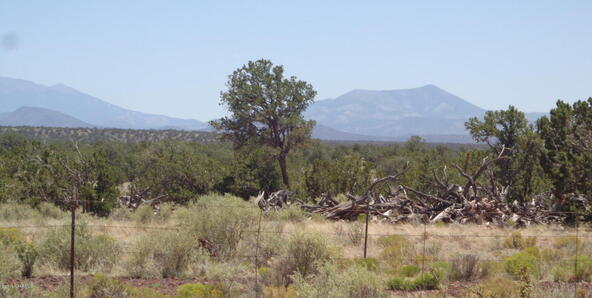 4768 South Rim Ranch Rd., Williams, AZ 86046 Photo 34