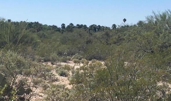 12441 E. Fireweed, Tucson, AZ 85749 Photo 6