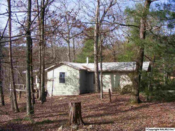 9416 County Rd. 103, Mentone, AL 35984 Photo 26