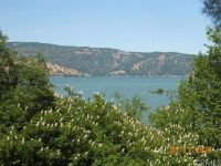 Home for sale: 6185 Soda Bay Rd., Kelseyville, CA 95451