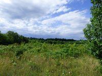 Home for sale: Happy Trails Ln., Appomattox, VA 24522