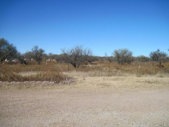 37600 S. Slims Pl., Arivaca, AZ 85601 Photo 42
