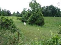 Home for sale: 55 .45 Ac. Four Season Rd., Smithville, TN 37166