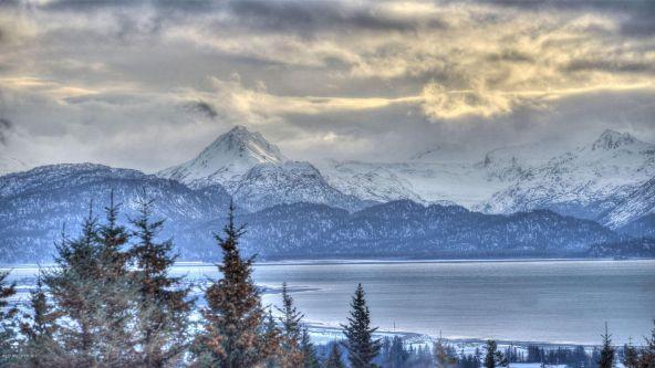 293 Mountain View Dr., Homer, AK 99603 Photo 23