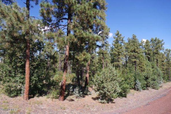 2850 W. Richardson Ln., Lakeside, AZ 85929 Photo 1