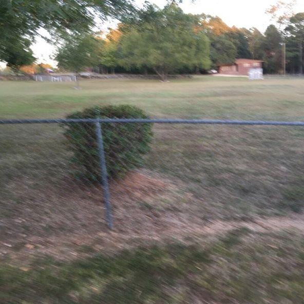 470 Brotherton, Cherokee, AL 35616 Photo 2