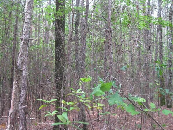 0 Lucile Rd., Greenville, GA 30222 Photo 7
