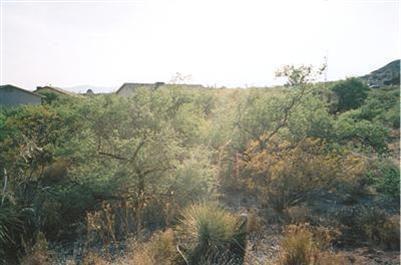 5830 Steven, Rimrock, AZ 86335 Photo 4