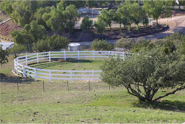 32065 Calle Vista, Agua Dulce, CA 91390 Photo 38