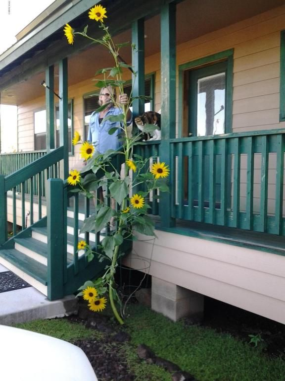 7944 Marken Ranch Rd., Show Low, AZ 85901 Photo 39