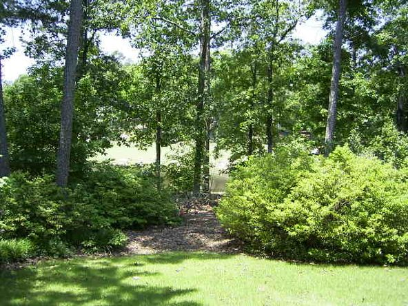 3 Rodriguez Trace, Hot Springs Village, AR 71909 Photo 40