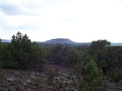 511 Martinez - Wwr Lot 511, Seligman, AZ 86337 Photo 28