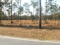Home for sale: Lot 16 Hanover Ln., Townsend, GA 31331