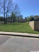 Home for sale: 406 Pine St. N.E., Hartselle, AL 35640