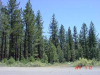 Home for sale: 000 E. Sierra St., Portola, CA 96122