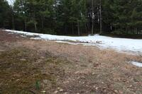 Home for sale: Lot 17 Briar Hill Rd., Hopkinton, NH 03229