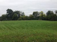 Home for sale: 11032 Wolf Creek Trail, Willis, MI 48191