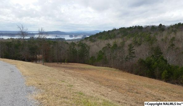 48 County Rd. 767, Cedar Bluff, AL 35959 Photo 1