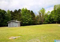 Home for sale: 96 Clear Creek Ln., Ashville, AL 35953