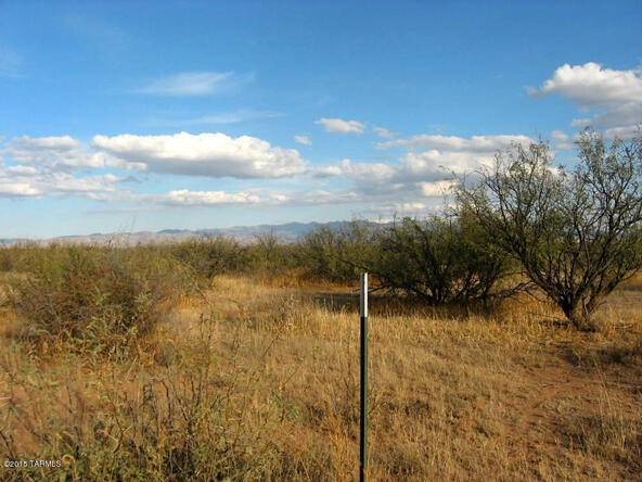 40 Ac On Grimmett, Pearce, AZ 85625 Photo 9