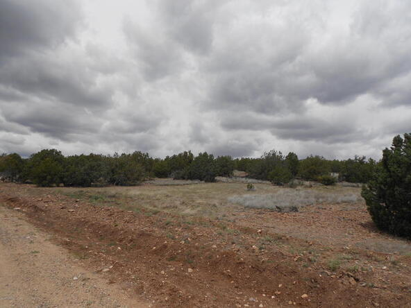 4650 W. Dillon Wash Rd., Prescott, AZ 86305 Photo 16