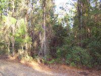 Home for sale: Lot 21 Lighthouse Cir., Woodbine, GA 31569