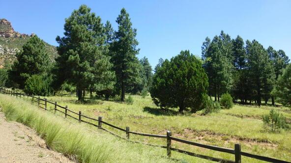 220 W. Zane Grey Cir., Christopher Creek, AZ 85541 Photo 24