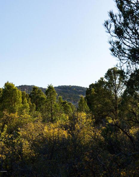 17955 W. Buckhorn Dr., Peeples Valley, AZ 86332 Photo 35