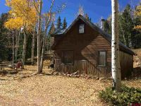 Home for sale: 435 Soulsease, Pitkin, CO 81241