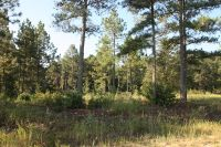 Home for sale: Lot 205 Kenric Point, Rockingham, NC 28379