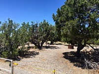 Home for sale: Lot 289 Stirrup Ln., Ancho, NM 88301