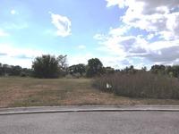 Home for sale: 9286 Potterville Dr., Willis, MI 48191