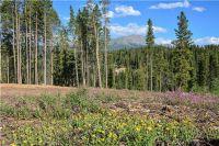 Home for sale: 5600 Barton Rd., Breckenridge, CO 80424