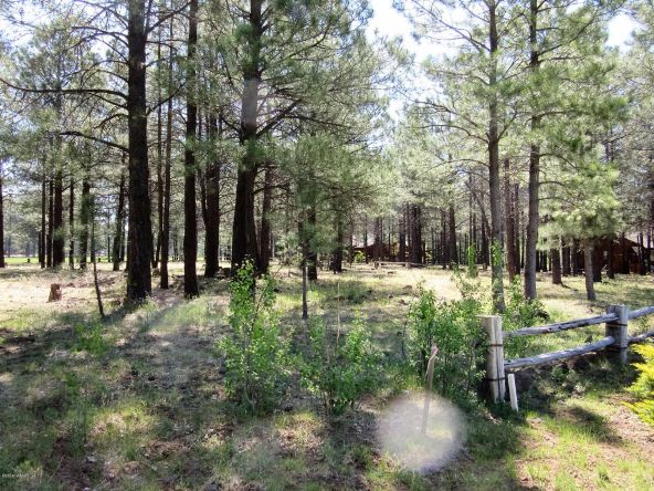 4651 Buck Springs Rd., Pinetop, AZ 85935 Photo 30