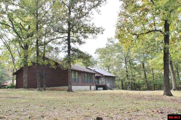 1239 Mc 8099, Yellville, AR 72687 Photo 13