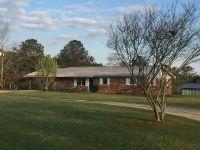 Home for sale: 3315 Hwy. 51, Ariton, AL 36311
