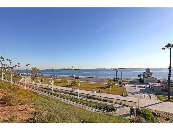 350 Molino Avenue, Long Beach, CA 90814 Photo 61