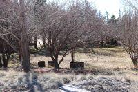 Home for sale: Lot 31 Cottonwood, Taylor, AZ 85939