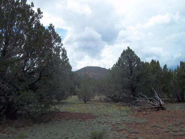 1142 E. Alimos Way, Williams, AZ 86046 Photo 3