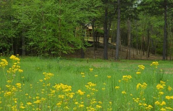 10 Montana Way, Auburn, AL 36832 Photo 8