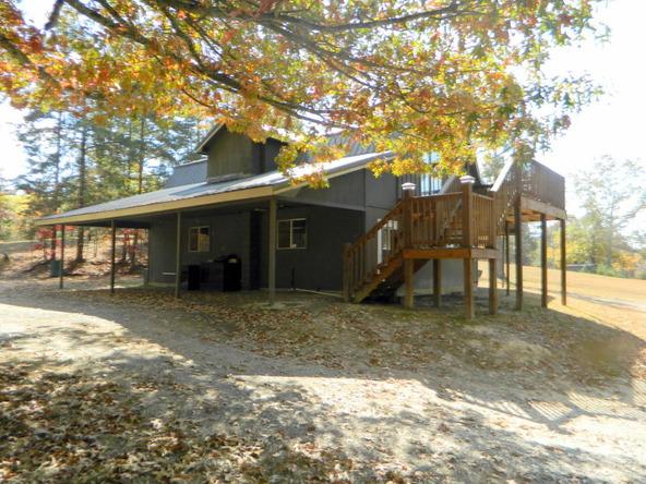 526 County Rd. 139, Bryant, AL 35958 Photo 134