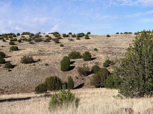 522 Sierra Verde Ranch, Seligman, AZ 86337 Photo 3