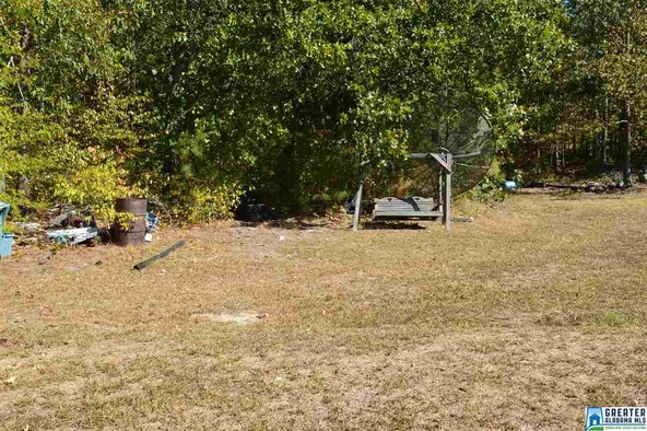 1620 Charlie Penny Rd., Piedmont, AL 36272 Photo 17