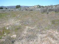 Home for sale: 0000 Windfall Trail, Julian, CA 92036