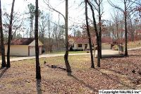 Home for sale: 11364 Alabama Hwy. 117, Valley Head, AL 35989