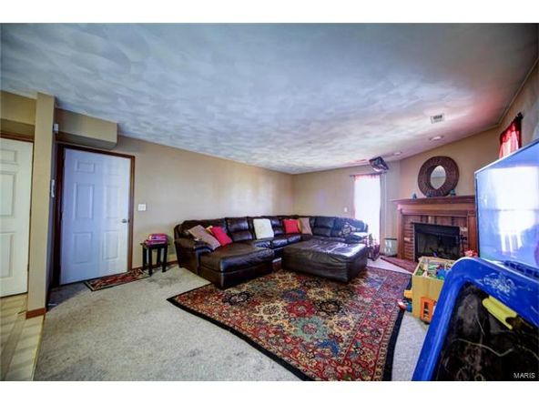 804 Country Meadow Ln., Belleville, IL 62221 Photo 30