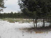 Home for sale: Schoenherr, Custer, MI 49405