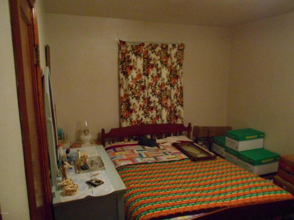 432 Locust, Flora, IL 62839 Photo 9