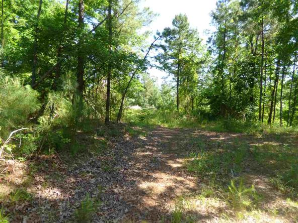 12 Ac Charlie Stover Rd., Royal, AR 71968 Photo 10