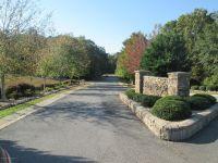 Home for sale: Stony Ridge Dr. Lot 3, Winfield, AL 35594